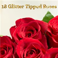 Beautiful-18-Glittered-Roses